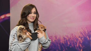 iHeartRadio Daytime Village - These Musicians Holding Puppies Will Melt You