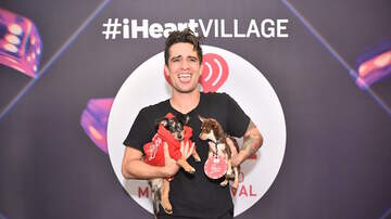 iHeartRadio Daytime Village - Here is Panic! at the Disco's Brendon Urie With Adorable Puppies (PHOTOS)
