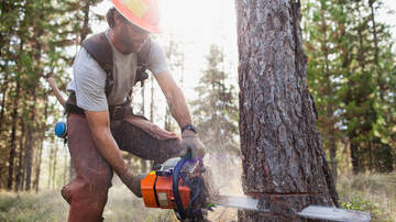Trending Stories - The 10 Most Dangerous Jobs For Men