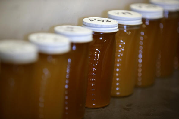 LOS BANOS, CA - SEPTEMBER 04:  Samples of honey are displayed on a shelf at Gene Brandi Apiaries on September 4, 2014 in Los Banos, California. As California's severe drought pushes through its third year, honey bees are producing less honey due to a lack