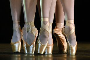 Thank You Party To Celebrate 30 Years Of The Sac Ballet