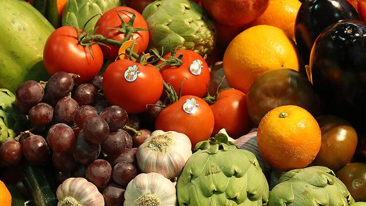 Fruit Logistica Agricultural Trade Fair