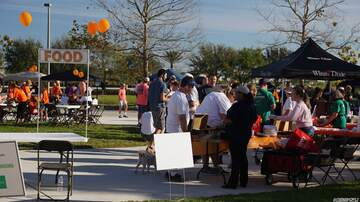 Photos - MS Walk In Viera - Photo Gallery