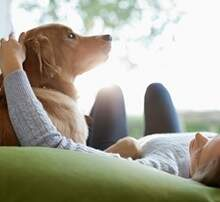 Allison - Dog Petting May Soon Be Illegal In Florida?  WHAT! Come on!