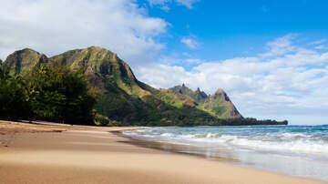Phone Taps - Phone Tap: Aloha