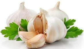 Uncle Sam - Study Shows Eating Garlic Could Help Your Memory