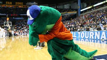 The Greek - Gators Take on St. Joseph's in the Charleston Classic