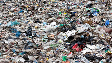 Randy Bigley - The Average American Wastes A Pound Of Food A Day