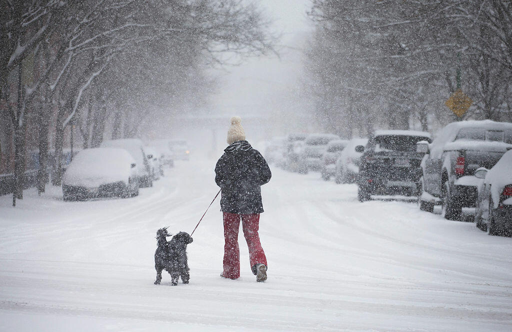 CHICAGO, IL - MARCH 23:  A person walks a dog along a snow-covered street as a spring storm passes through the area on March 23, 2015 in Chicago, Illinois. Some areas in and around Chicago have received more than six inches of snow from the storm.  (Photo by Scott Olson/Getty Images)
