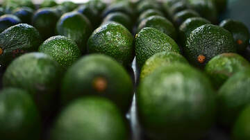 Weird News - Robber Reportedly Held Up Two Banks With Avocado He Claimed Was A Grenade