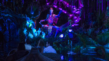 Big D - Big D traveling down Na'vi River Journey at the all NEW Pandora: The World of Avatar