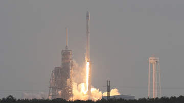 Local News Wire - Contaminated Mouse Food Delays Cape Canaveral Rocket Launch
