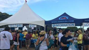 Photos - Hokule'a Homecoming 6.17.17