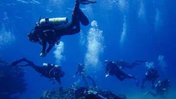 Florida News - Deerfield Beach Divers Set World Record For Underwater Cleanup