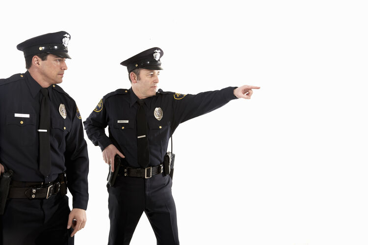 Male police officers pointing