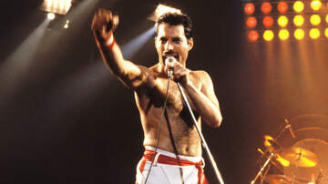 Cool Beans - Freddie Mercury 09/05/1946-11/24/1991