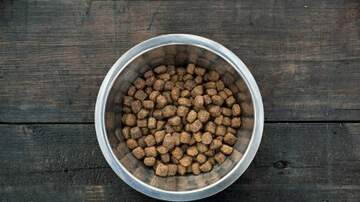Cliff Bennett - Dog Food RECALL: FDA says it could kill your dog!
