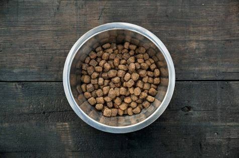 Dog Food Recall Fda Says It Could Kill Your Dog Cliff Bennett