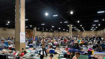 Tampa Local News - List of Bay Area Hurricane Shelters