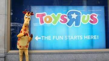 D Scott - Is Toys R Us Reopening?