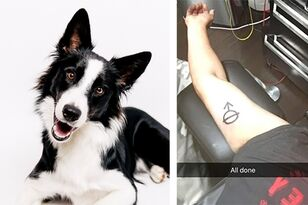Big Mistake: Man Gets Same Tattoo As His Rescue Dog Not Knowing Its Meaning