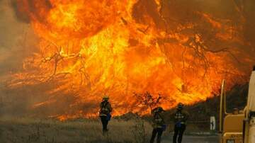T-Roy - CALIFORNIA FIRES: At Least 31 Dead in Devastating Blazes