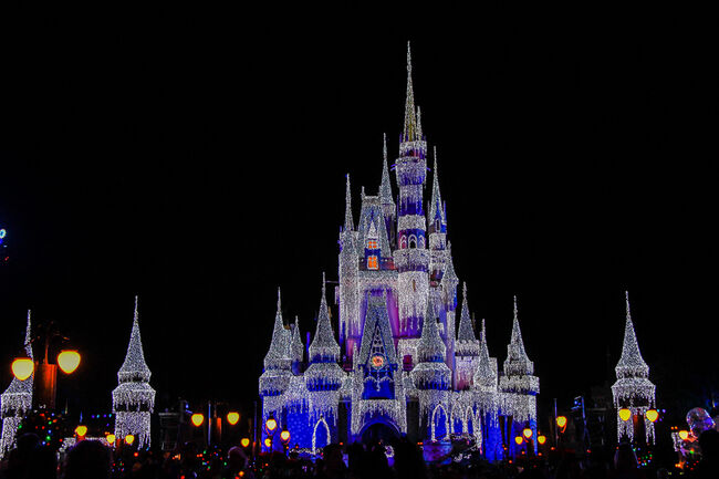 You Can Now Get Married At Disney World After Dark