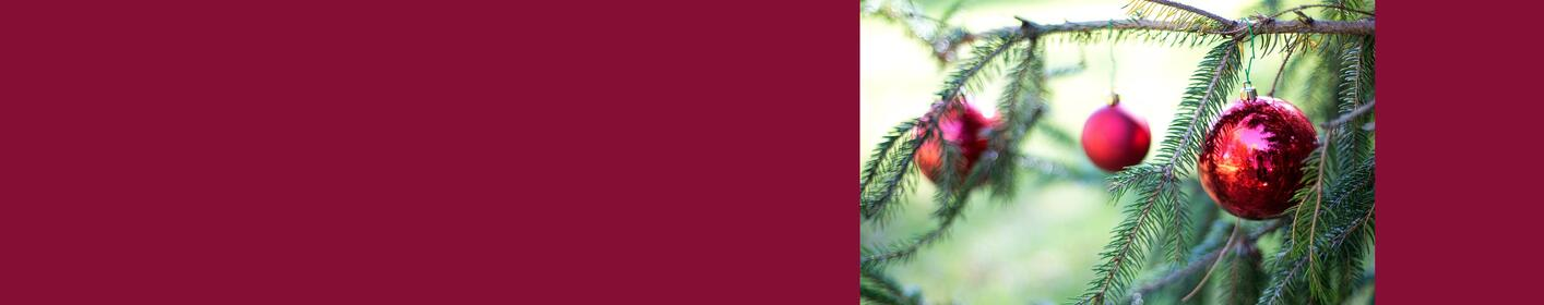 Do you know a family who might need a free Christmas tree?
