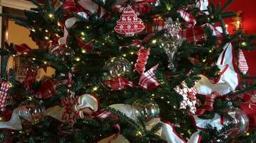 Theresa Lucas - Christmas Decorating May Make You Happier!