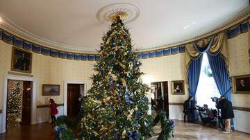 Florida News - Florida Man Chosen To Decorate The White House For Christmas