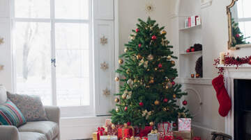 Julie - Want to Feel Good? Decorate for Christmas NOW