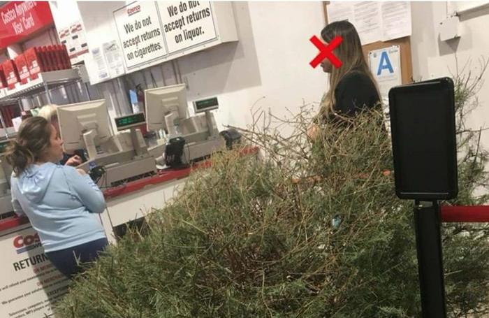 Steve Harvey Christmas Tree.Woman Returns Her Dead Christmas Tree To Costco The Steve