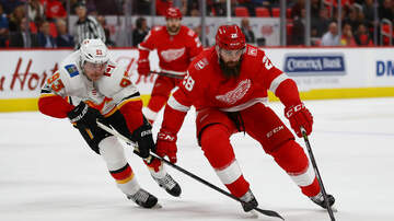Big Drew and Jim - Is Luke Witkowski Worth it for the Red Wings?