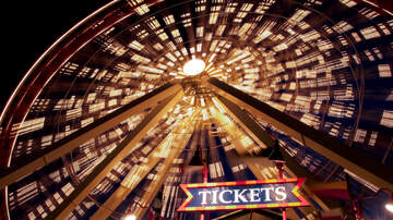 Sonya Blakey - Free Ferris Wheel Ride for Your Special Loved One on Valentines @ Navy Pier