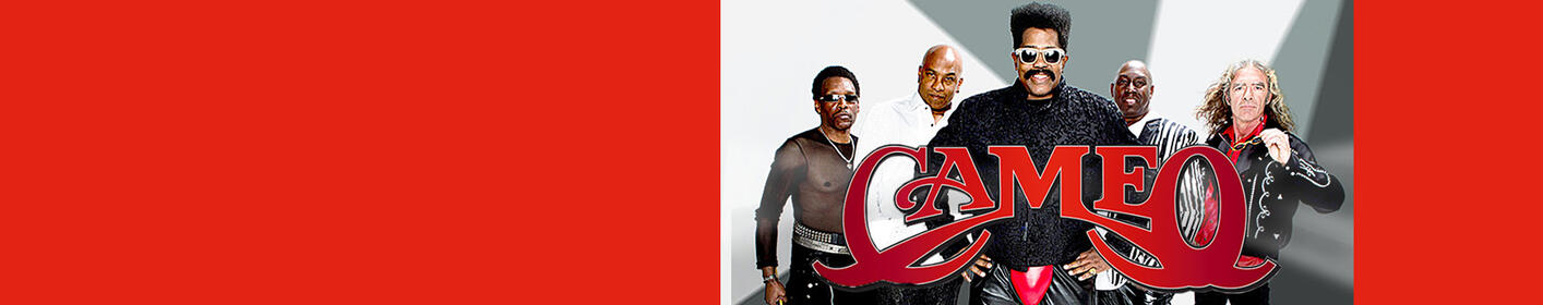 Battle of the Ages with Cameo, Dru Hill, Ginuwine & More 4/28 at Columbus Civic Center