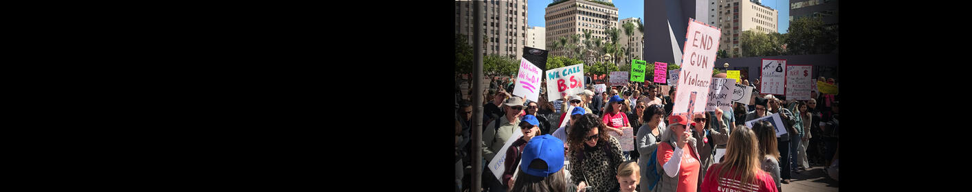 Gun Control Rallies Held All Over California