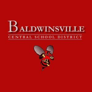 Bville Bees