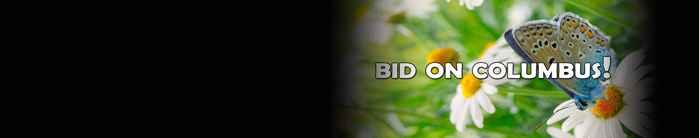 Spring Auction: Bid Now, Bid Often, Bid To Win!