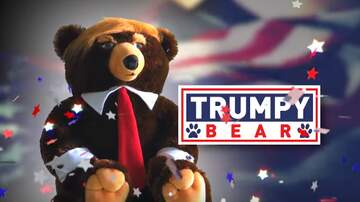 Mike Porcaro - Trumpy Bear Commercial (This is a REAL THING!)
