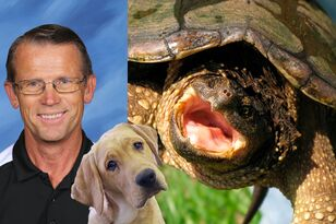 Teacher Under Fire For Feeding Live Puppy To Turtle In Front Of Students