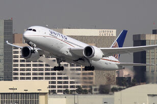 Dog Dies After Being Forced into Overhead Bin On United Flight