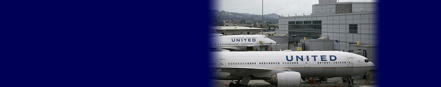 United Airlines Temporarily Bans Animals From Cargo