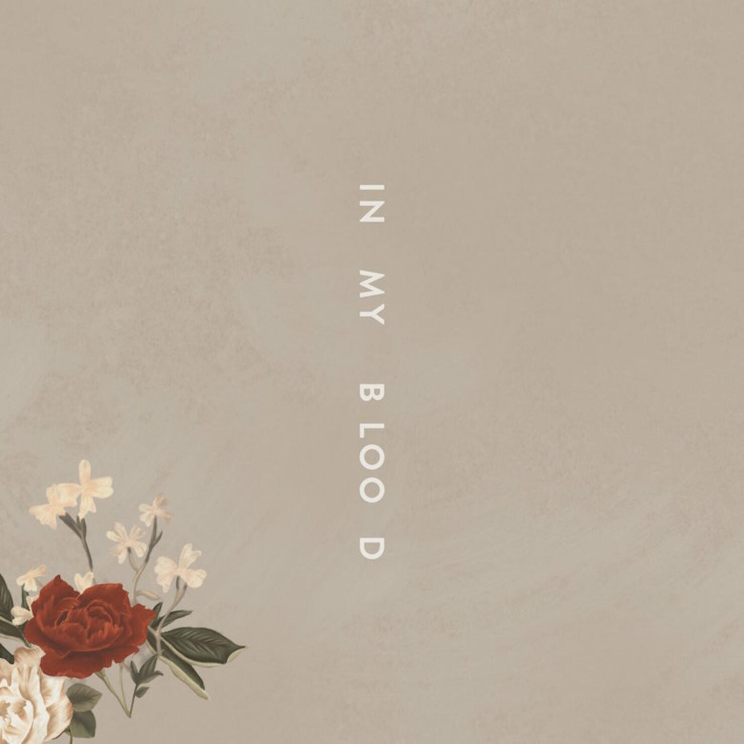 """Shawn Mendes """"In My Blood"""" Cover Art"""