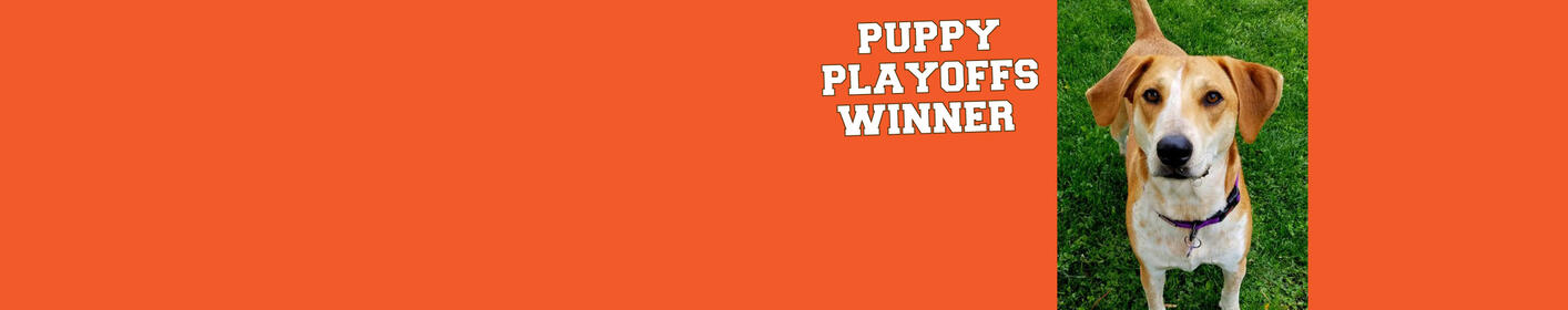 Puppy Playoffs-Congrats Kole!