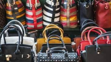 JT Bosch - WATCH: Are Women's Purses Really Like This?