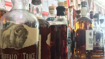 Photos - Bacon and Bourbon Fest, Wellington