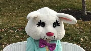 Photos - 2018 Easter Bunny Photos