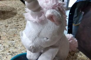 Man Treated Stuffed Unicorn To A Spa Day