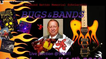 - Bugs & Bands