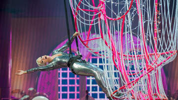Photos - P!nk at the TD Garden